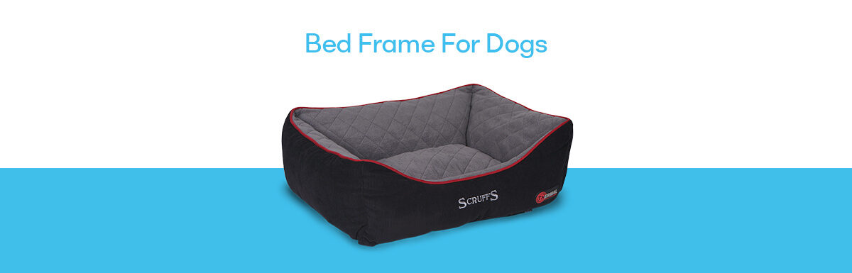 Best Bed Frame For Dogs – Complete Buyer Guide