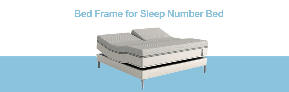 Top 5 Best Bed Frame for Sleep Number Bed Reviews 2020