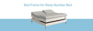 Bed Frame for Sleep Number Bed