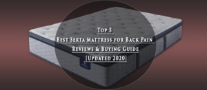 Top 5 Best Serta Mattress for Back Pain Reviews & Buying Guide [Updated 2020]