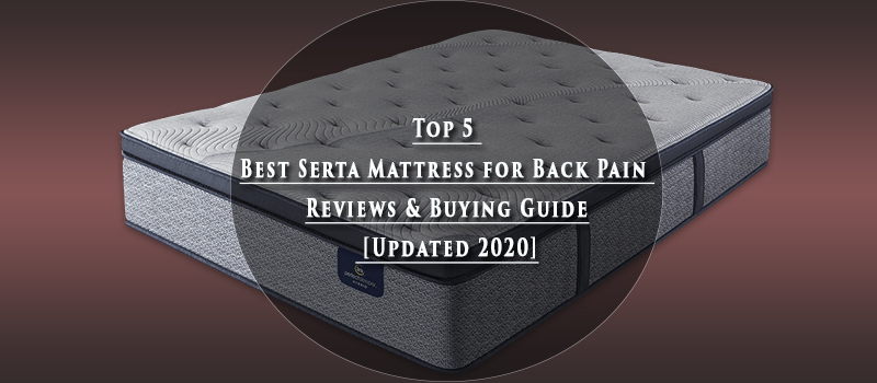 Top 5 Best Serta Mattress for Back Pain Reviews & Buying Guide [Updated 2021]
